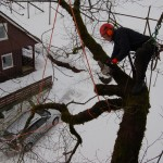 Arne Romtveit jobber presist i ein diger Alm i Ulvi Hardanger